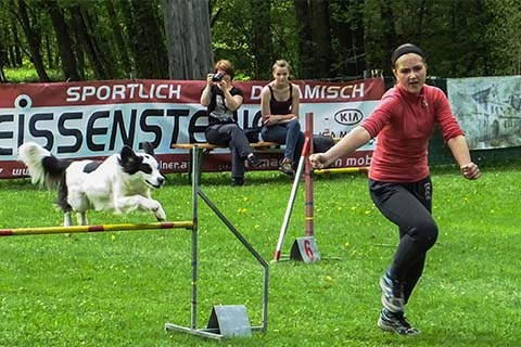 gallerien-agility_0000s_0009_S0462875