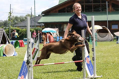 gallerien-agility_0000s_0010_20130630-IMG_0707