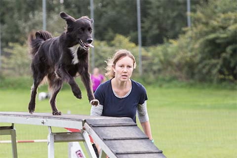 gallerien-agility_0000s_0011_0H5A6023