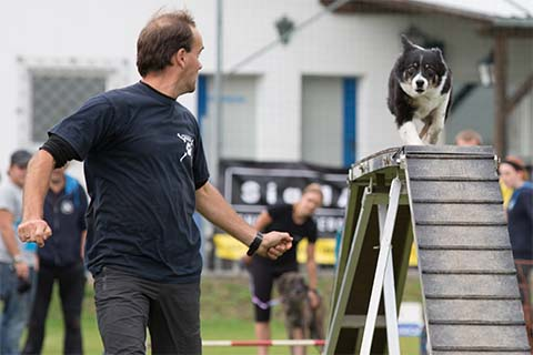 gallerien-agility_0000s_0014_0H5A5477