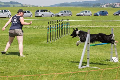 gallerien-agility_0000s_0015_0H5A9746