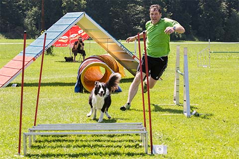 gallerien-agility_0000s_0017_0H5A9555
