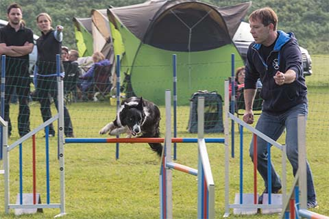 gallerien-agility_0000s_0024_0H5A6950