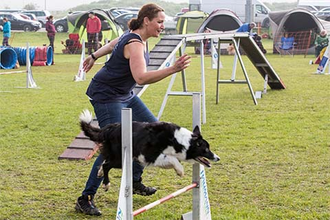 gallerien-agility_0000s_0027_0H5A6895