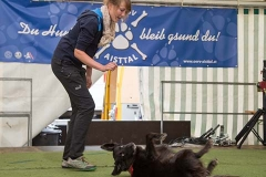 gallerien-trickdog_0001s_0013_0H5A3426